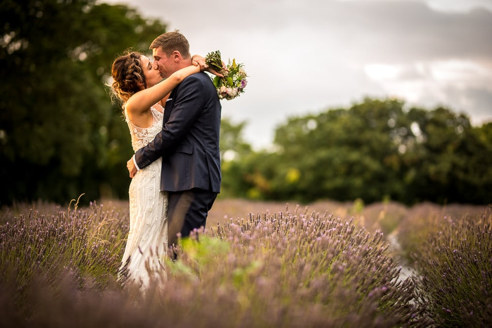 swettenham arms lavender field and wedding couple